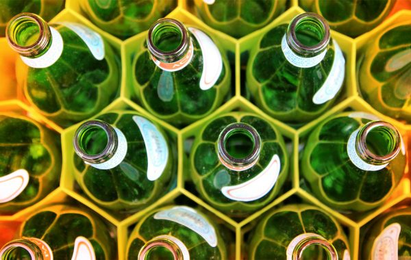 Launch an Office Recycling Program