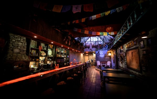 Twisted Roots Kava Bar: An Unexpected Hollywood Hangout